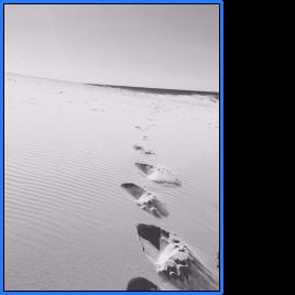 footsteps on beach 2